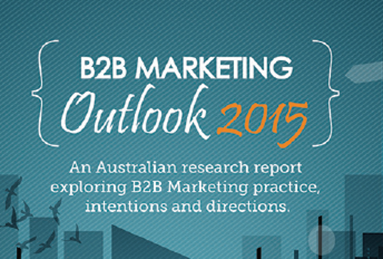 B2B  Marketing Outlook 2015